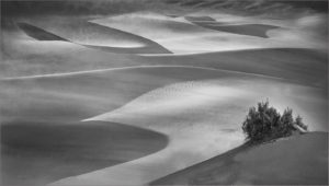 mist-over-the-dunes-by-geoffrey-lauder